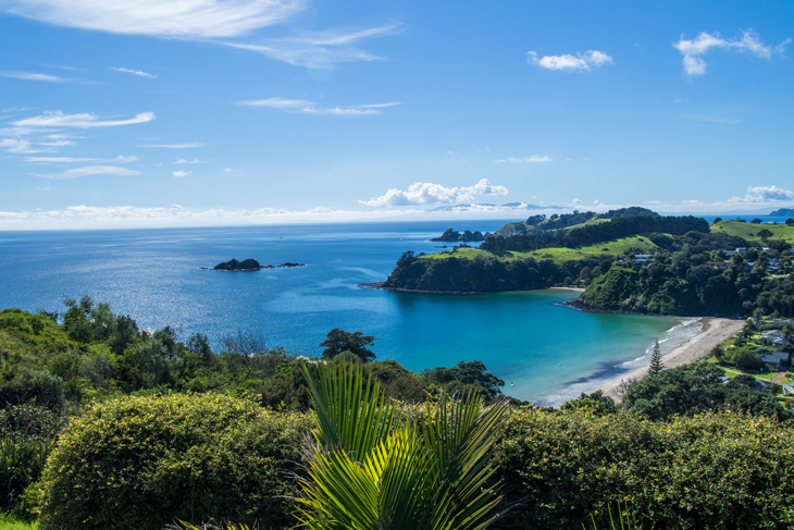 Little Palm Beach on Waiheke Island